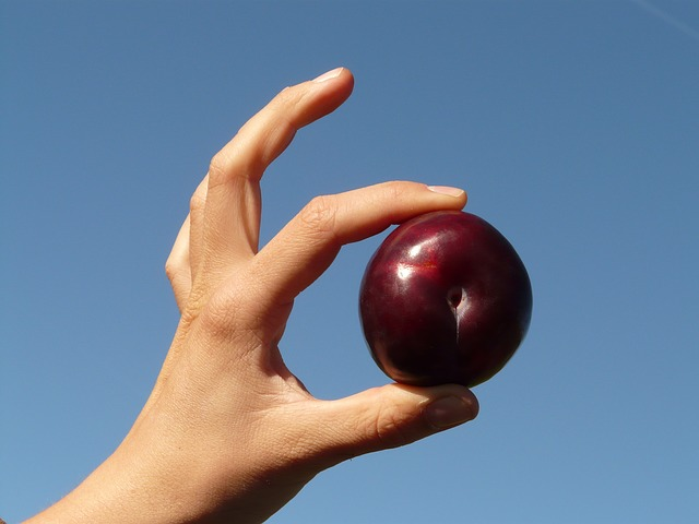 THE PLUM ON JACK'S THUMB