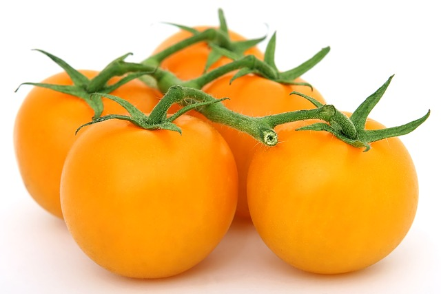 A BETTER TOMATO – RED OR YELLOW?